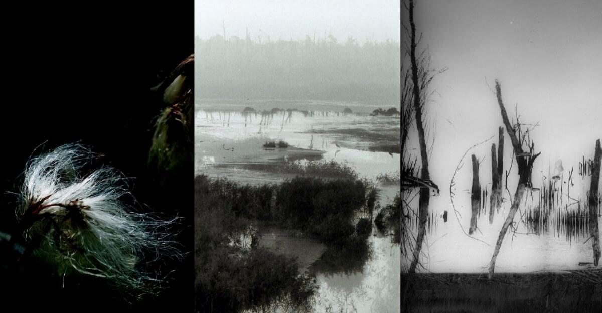 Ausstellung Im Moor, Seitz, Lipski, Nagel